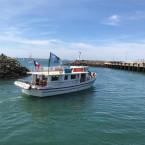 Sortie du port de La Turballe